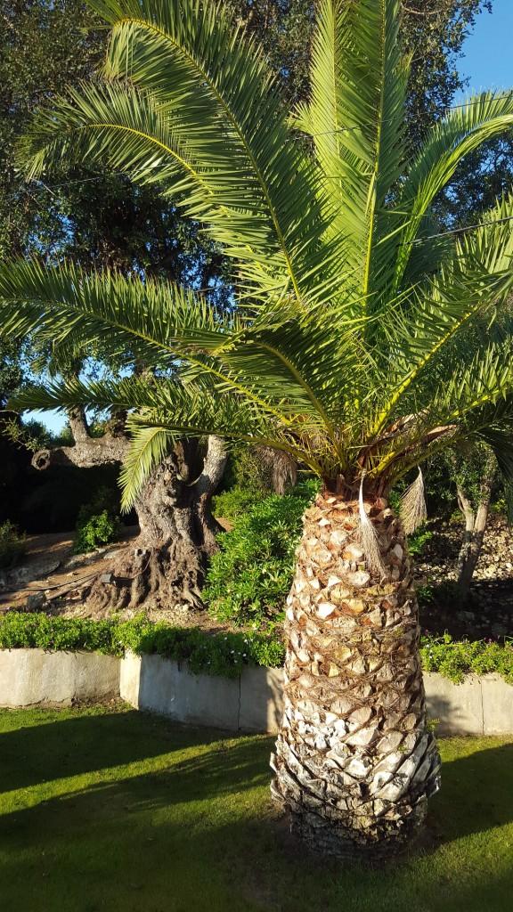 Talks & Treasures - Vakantiehuis in Portugal