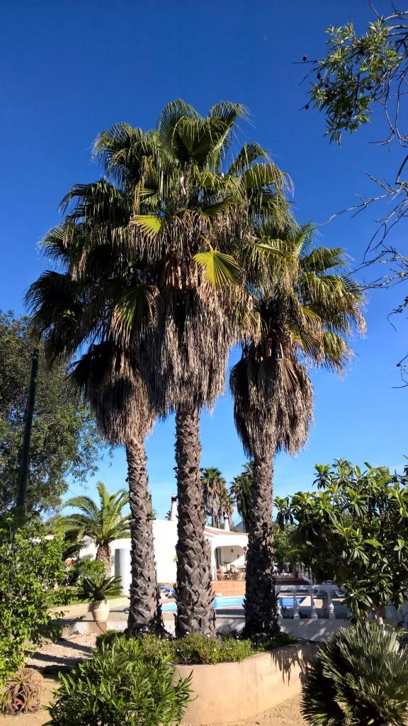 Talks & Treasures- vakantiehuis in Portugal