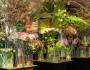 Talks & Treasures - 's Zomers Bloemen
