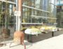 Talks & Treasures - terrassen met zon 2