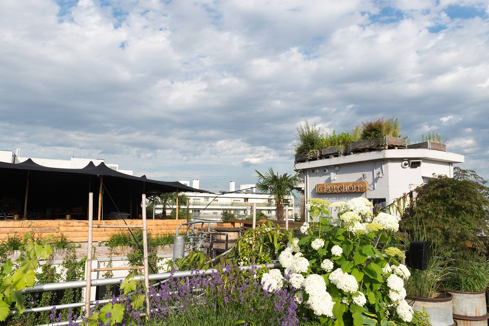 Talks & Treasures - de beste rooftop bars Rotterdam