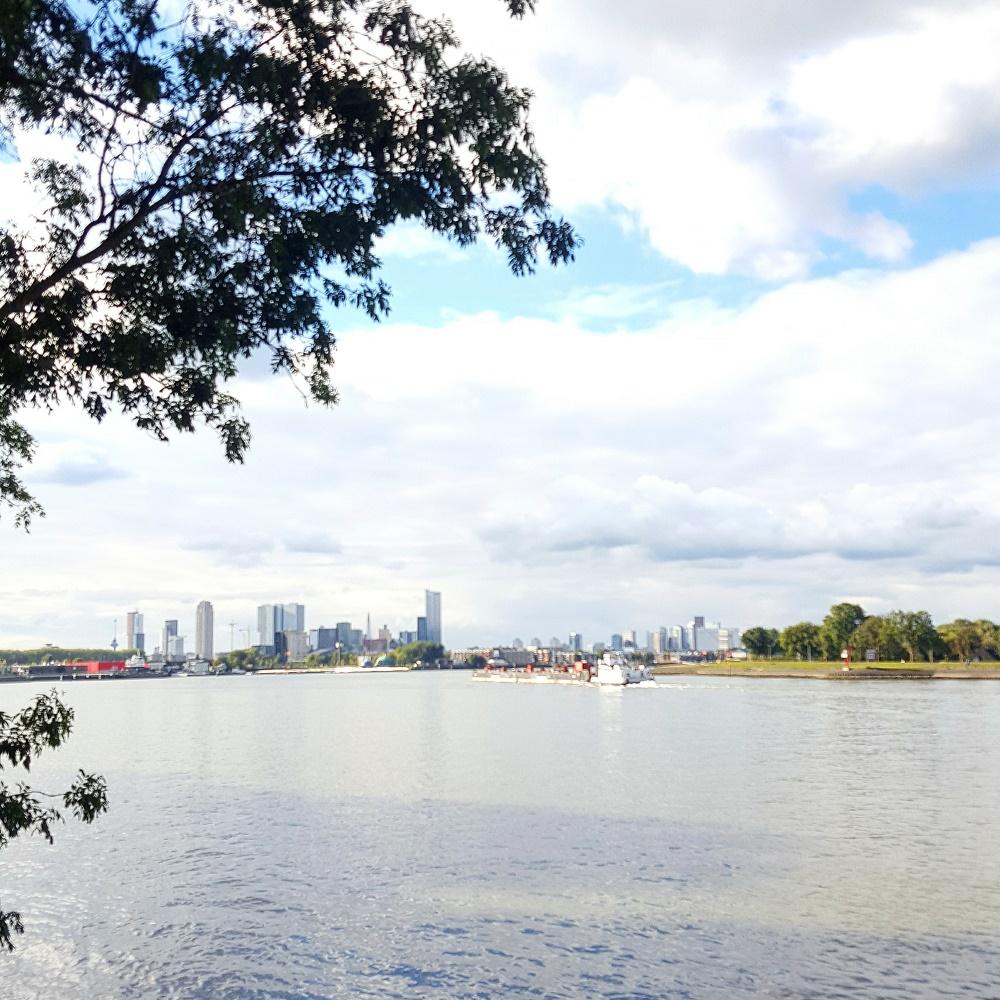 Talks & Treasures - Eiland Brienenoord - groene oase in Rotterdam