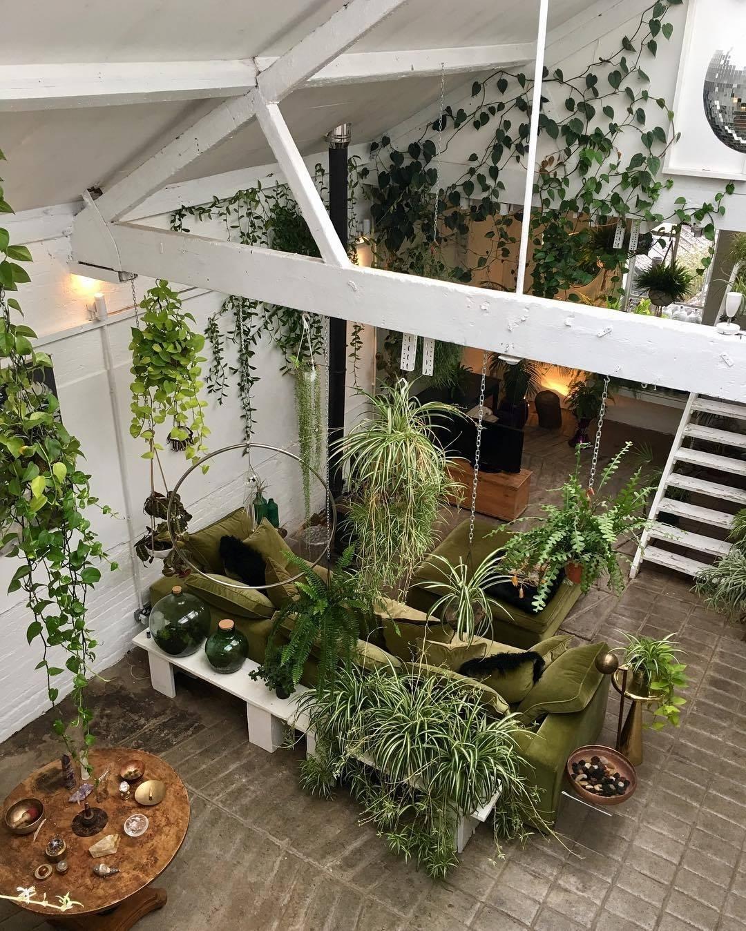 Levend groen & planten styling   talks & treasures