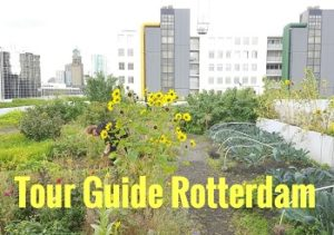 Talks & Treasures - Tour Guide Rotterdam - homepage