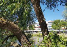 Talks & Treasures - Hillegersberg- winkelen via het water