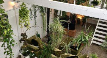 Talks & Treasures- Leven groen & planten styling