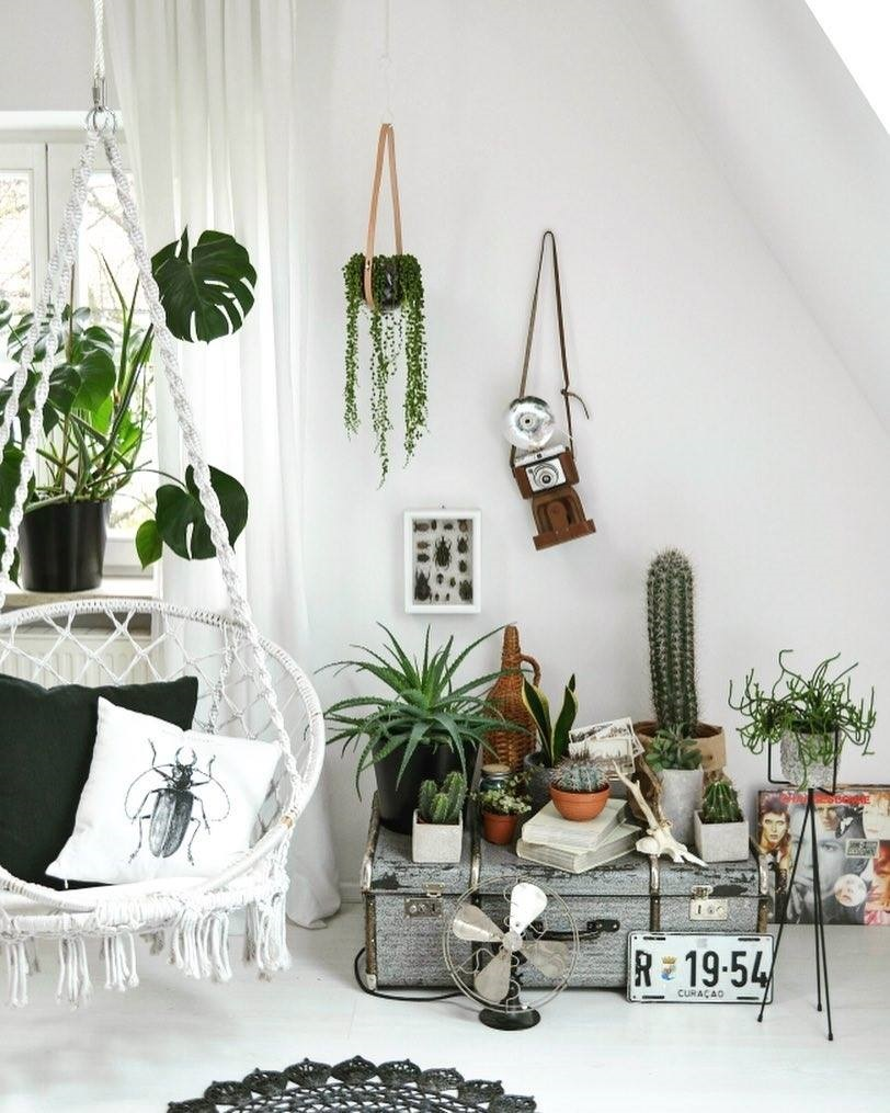 Talks & Treasures- Leven groen & planten styling