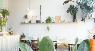 Talks & Treasures - Afrikaanderwijk Rotterdam - groene en gezellige hotspots 1
