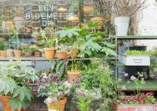 Talks & Treasures - Maak kans op cadeaubon Een bloemetje op tafel