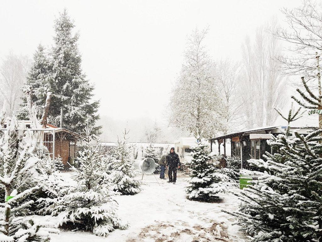 alks & Treasures - winterwonderland tips Rotterdam en weekendlinkjes
