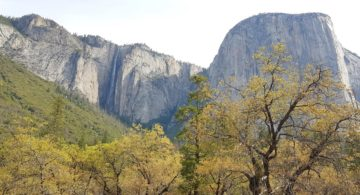 Talks & Treasure - 1 dag in Yosemite Valley