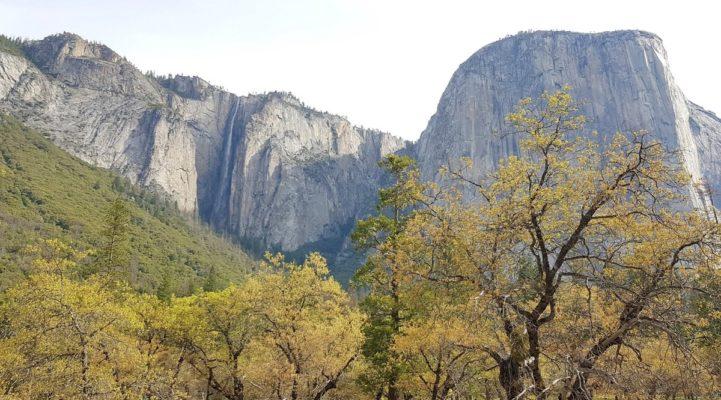 Talks & Treasure - 1 dag in Yosemite Valley