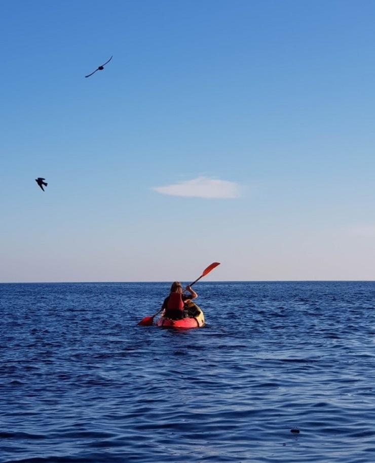 Talks & Treasures -La Herradura het best bewaarde geheim aan de Spaanse kust