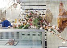 Lekker eten in Hillegersberg: 7 foodie hotspots